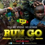 stonebwoy-run-go