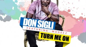 Don Sigli – Turn Me On ft Mugeez (Prod by P.J)