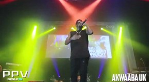 Sarkodie performance highlights from 2014 UK Concert