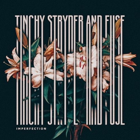 tinchy-stryder-imperfection