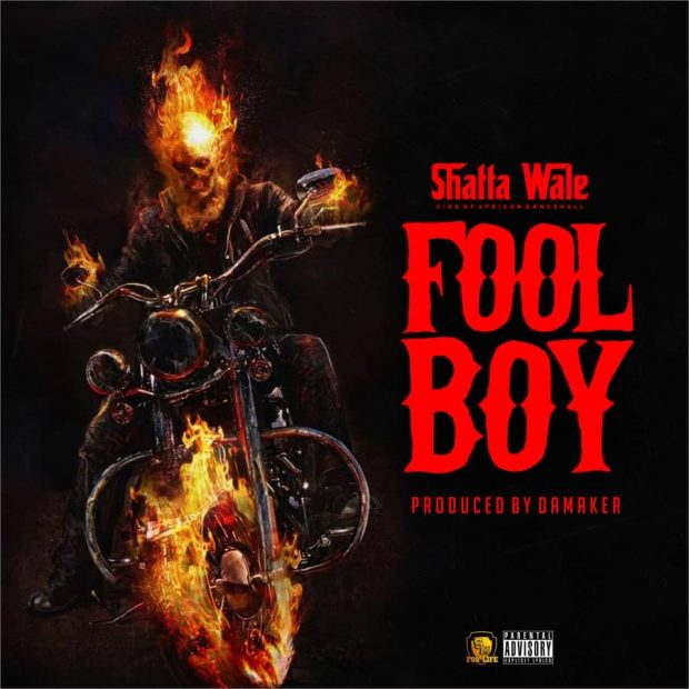Download Shatta Wale - Fool Boy